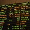 Sports Betting 101