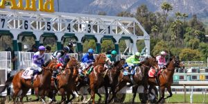 Horse Race Betting 101